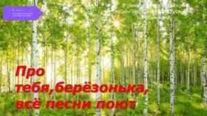 Read more about the article Про тебя берёзонька, всё песни поют